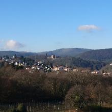 Blick auf Bad Dürkheim und Burgruine Limburg
