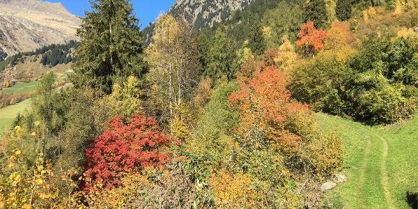 Alta via di Parcines - escursione circolare