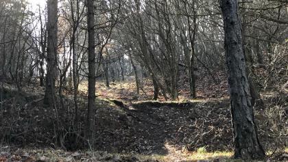 Az ösvény