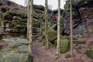 Foto Aufstieg zur Johanniswacht im Bielatal