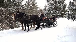 Pferdeschlittenfahrten Pähl ()