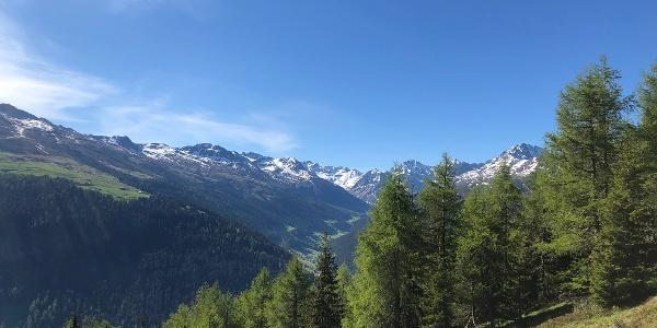 Grüeni Alp Blick ins Sertig