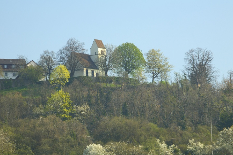 Tüllinger Weinweg