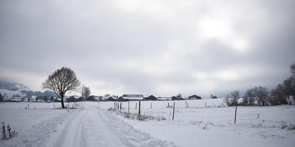 Winterwanderung Scherenauer Runde