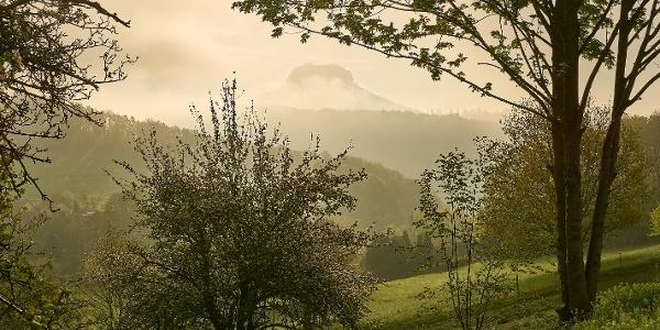 Blick zum Lilienstein Thürmsdorf
