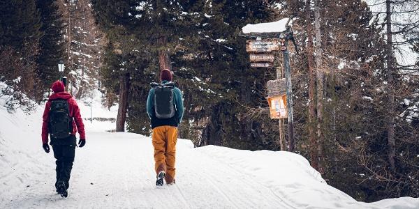 Winterwanderweg zwischen Riffelalp Resort und der Station Riffelalp