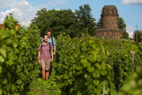 Weinwandern