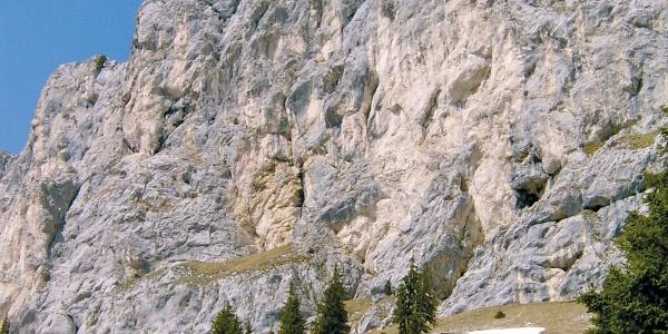 Hochwiesler