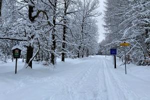 Foto Eulenthor/ Grenze zu Tschechien
