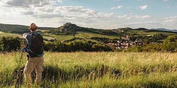 Blick auf die Burgruine Falkenstein