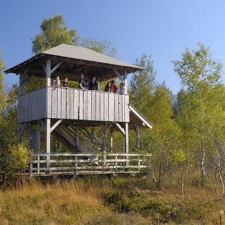 Blick auf den Aussichtsturm Kendlmühlfilzen im Herbst.