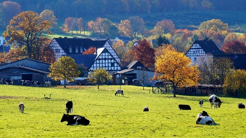 Grenzwanderung in Altenhellefeld
