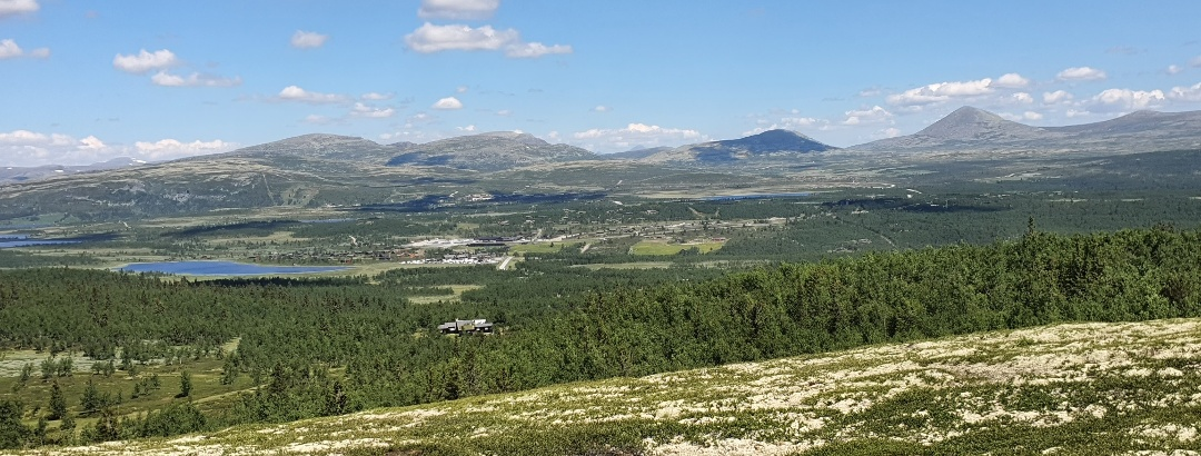 Views from Trabelifjellet