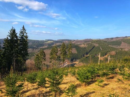 Rund um die Almert am Oberbecken des Pumpspeicherwerks Rönkhausen