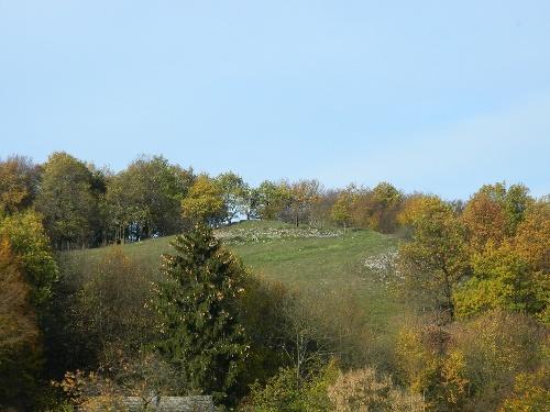 Naturschutzgebiet hohe Steinert