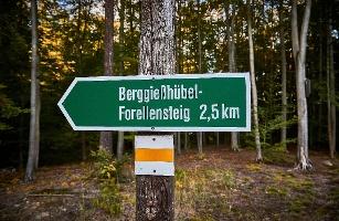 Foto Forellensteig Berggießhübel