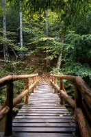 Foto Brücke Etappe 5