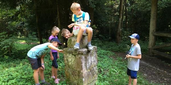 Annis Schwarzwaldgeheimnis Calw-An der alten Saatschule