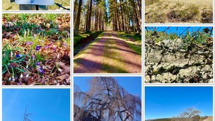 Impressionen Eifelschleife Baasemer Heide