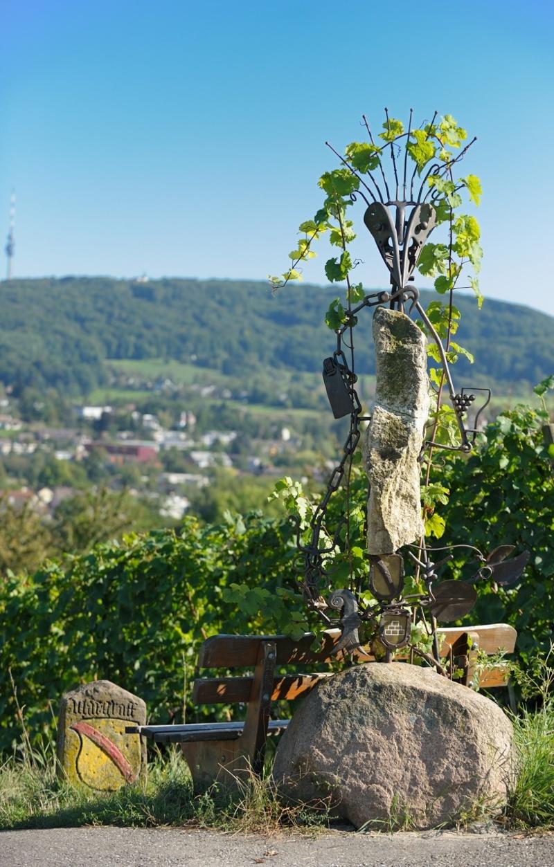Riehener Weinweg