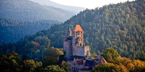 Burg Berwartstein, Erlenbach bei Dahn
