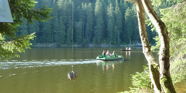 Kunstpfad und Tretbootfahrt am Mummelsee