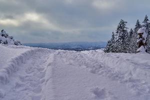 Foto Winterwandern