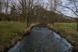 Foto Wesenitz