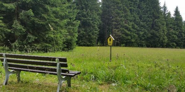 FND Börnerwiese am Kammweg Etappe 9