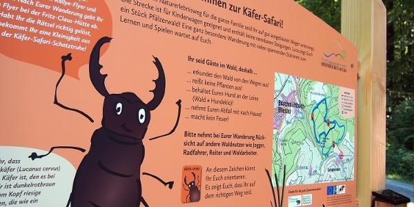 Startpunkt Käfer-Safari