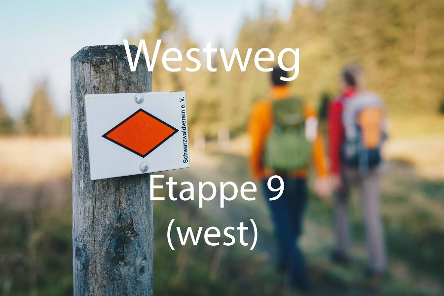 Westweg-Etappe 09 (West): Kalte Herberge - Hinterzarten