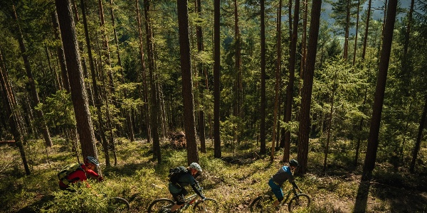 Schönblick-Trail