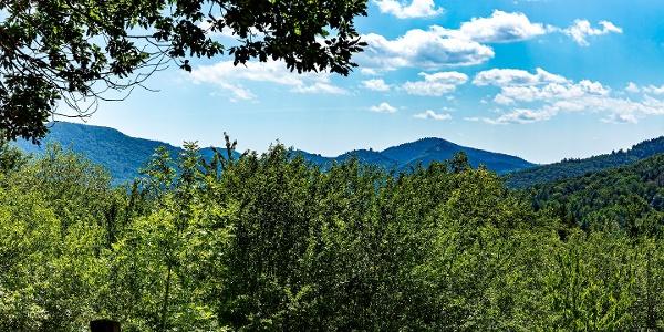Schöne Aussicht Dernbach