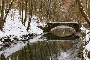 Foto Liebethaler Grund