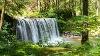 Wasser & Wald in der Höllschlucht - @ Autor: Julian Knacker - © Quelle: Pfronten Tourismus