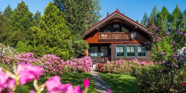 Außenansicht Ferienhaus Waldidyll
