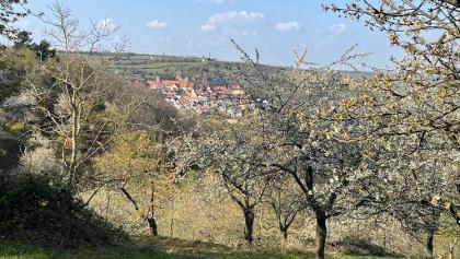 Neuleininger Burg
