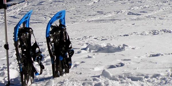 Zur Bichlwaldalm mit den Schneeschuhen, Spaß garantiert!