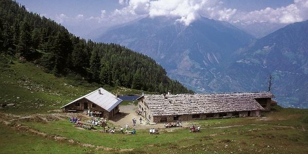 Über die Naturnser Alm auf den Gipfel der Naturnser Hochwart, der mit herrlichen Aussichten entlohnt.
