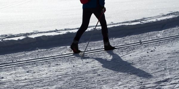 Wintergenuss auf der Langlaufloipe Möltner Joch am Salten.