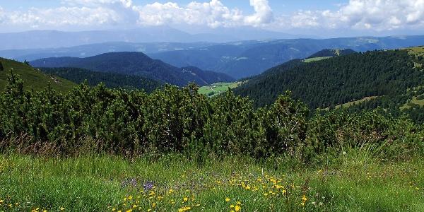 Panoramablick zum Weiler Gißmann am Ritten
