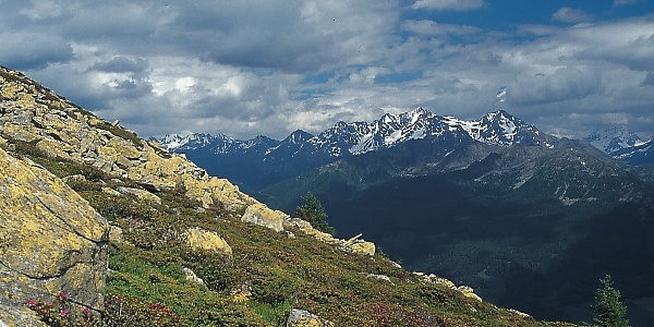 View from Weißenbach in the valley of Tures - Tauferer Ahrntal