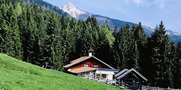 Laneralm mit Blick auf das Aldeiner Weißhorn