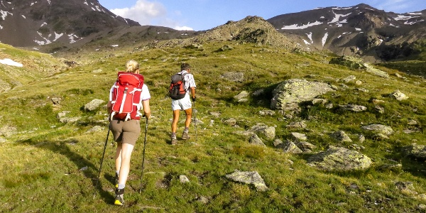 Durch das ruhige Pedertal führt die Bergtour auf die Plattenspitze im Martelltal.