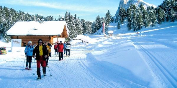 Schneeschuhwandern unter dem Peitlerkofel - vom Fistilboden zu den Gunganwiesen und zur Halslhütte.