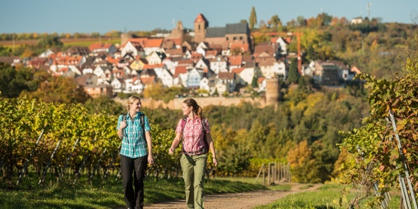 Blick auf das Burgdorf Neuleiningen