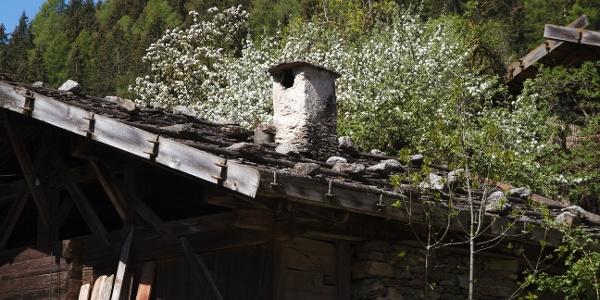Vorbei an alten Höfen