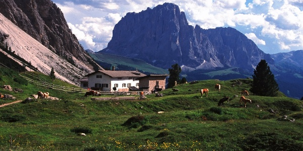 Die Regensburger Hütte mit Blick zum Langkofel