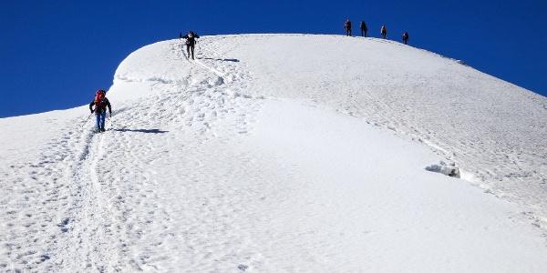 Auf dem Gipfelgrat zum Monte Cevedale - großartige Skitour vom Martelltal auf den Gletscher.