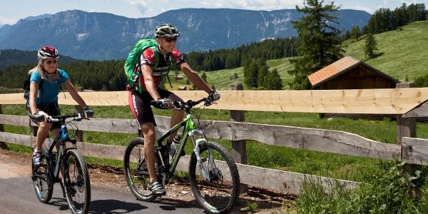Mit dem Bike von Hafling über die Leadneralm hinauf zur aussichtsreichen Vöraner Alm.